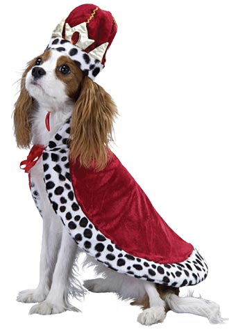 Royal King Dog Costume