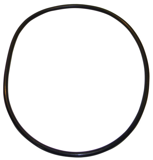 Pentair Cartridge Filter O-Ring