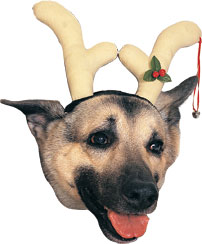 Reindeer Antler Dog Headpiece