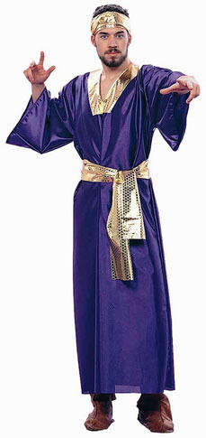 Adult Purple Wise Man Costume