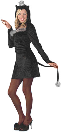 Adult Black Cat Dress Costume
