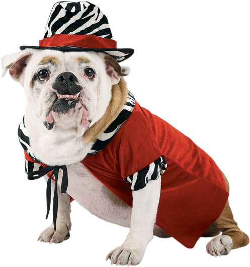 Red Pimp Dog Costume