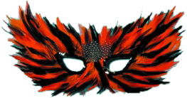 Orange & Black Feather Eye Mask