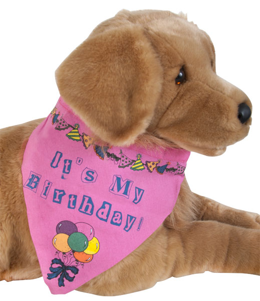Happy Dog Bandanna Happy B Day