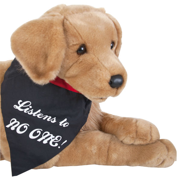 """Warning: Listen to No One"" Dog Bandanna"