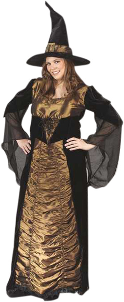 Plus Size Velour Witch Costume