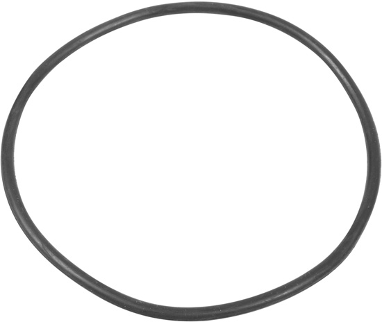 Summer Escapes Pool Filter Case O-Ring