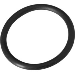 Summer Escapes 2000 Filter Pump Type C Retainer Nut O-Ring