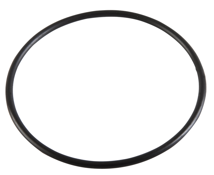 Pentair Intelliflo Pump Diffuser Gasket