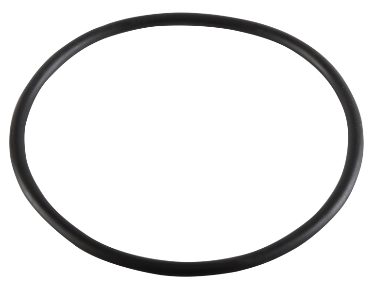 Pentair Dynamo Pump Lid Gasket