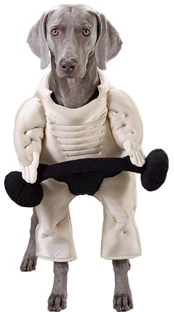 Muscle Dog Costume