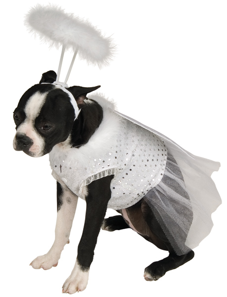 Doggie Angel Pet Costume