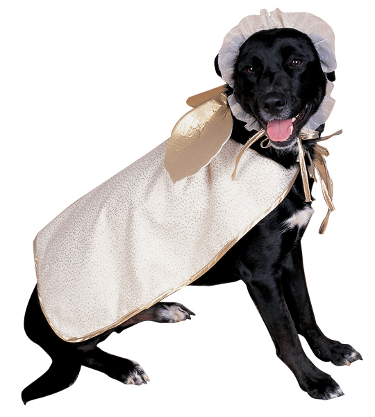 Angel Doggie Costume