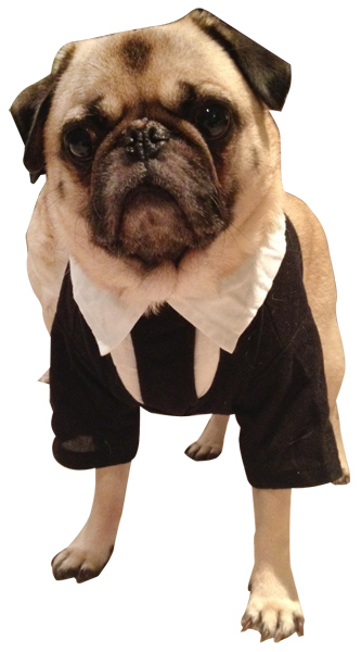 Men In Black Ii Dog Costume Sci Fi Movie Costumes
