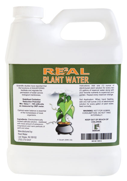 Real Plant Water Alkaline