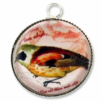 Silver Plated Glass Dome Fancy Bird Pendant Charm (1PC)