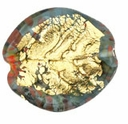 Czech Gold Foil Leaves 25/24mm Montana Blue (1pc)