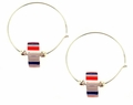 American Pride Earrings