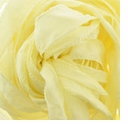 42� Pale Yellow Silky Ribbon (1 Strand)
