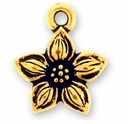 Antique Gold Star Jasmine Charm