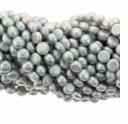 Silvery Peacock Button Vertical Drilled Freshwater Pearl 4x6mm Bead Strand