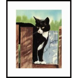 Who Goes There? Framed Artist's Proof Drew Strouble Black-White-Tuxedo-Cat Art