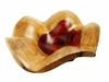 Costa Rica Exotic Rosewood Shell
