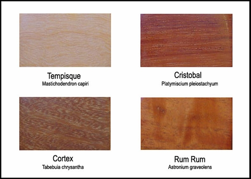 Wood Colors - Exhibit B