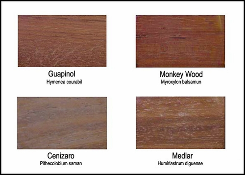Wood Colors - Exhibit C