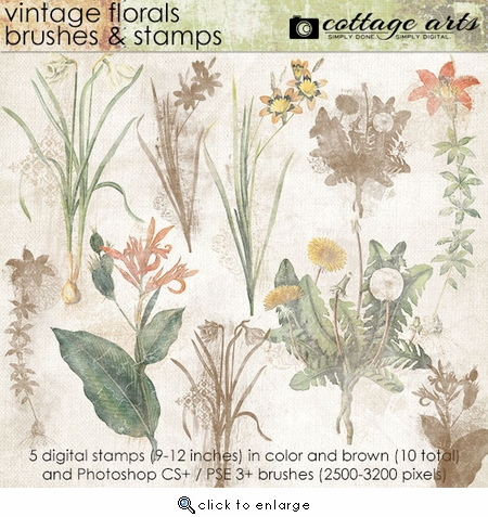 Vintage Florals Brushes & Stamps