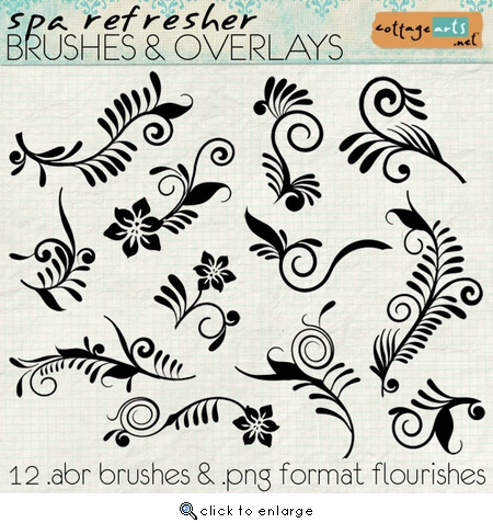 Spa Refresher Brushes & Overlays