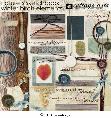 Nature's Sketchbook Winter Birch Elements