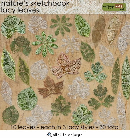 Nature's Sketchbook - Lacy Leaves