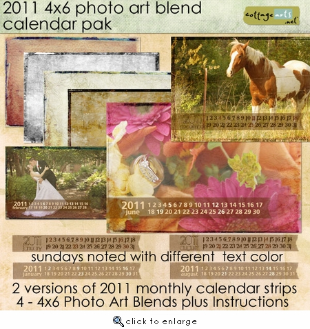 2011 4x6 Photo Art Blend Calendar Pak