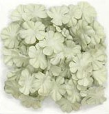 "Paper flowers, 2cm (.79""), scrapbook (Kaisercraft)<br>(4_choices)<br><font color=red>Close out, very few left</font>"