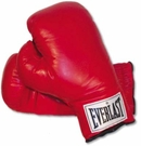 Everlast Boxing Gloves and Trunks