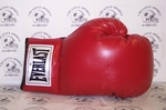 Everlast Vinyl Autograph Boxing Glove - Single Right glove