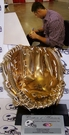 Evan Longoria - Autographed Official Rawlings Mini Gold Glove Mitt