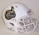 UNC Charlotte 49ers Speed Revolution Riddell Mini Football Helmet
