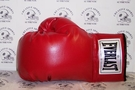 Mike Tyson - Autographed Everlast Vinyl Left Boxing Glove