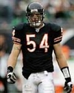 Brian Urlachers - Autographed Chicago Bears 8x10 Photo