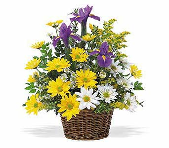 Smiling Spring Basket