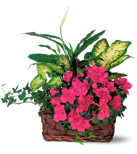 Azalea Attraction Garden Basket