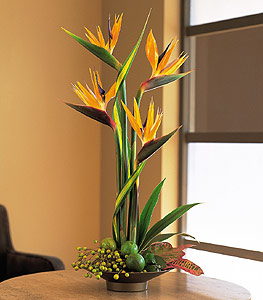 Flowers Delivery Ben F Brown's Memorial Funeral home -   707 N Macarthur Blvd, Irving, TX 75061