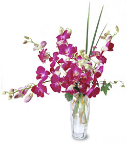 Hawaii Orchids arrangement