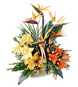 Luxury basket garden flowers