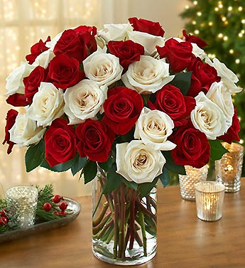 Three dozen Peppermint Rose Bouquet