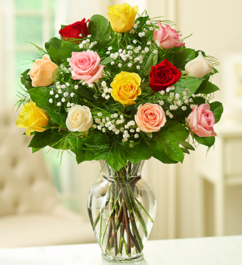 Rose Elegance - Premium Long Stem Assorted Roses
