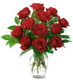 Classic Long Stemmed Rose - Designs East Florist Dallas