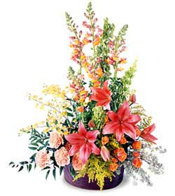 Eternal Friendship ™ Arrangement - Designs East Florist Dallas